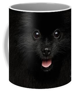 Coffee Mug featuring the photograph Close-up Portrait Of Happy Pomeranian Spitz Dog by Sergey Taran