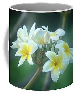 Cloudy Day Plumerias Coffee Mug