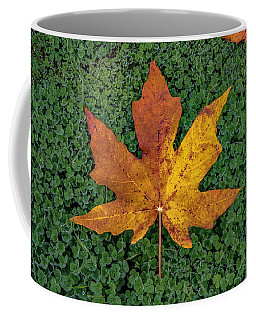 Clover Leaf Autumn Coffee Mug