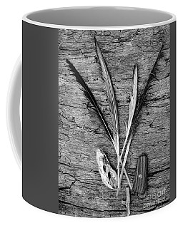 Coffee Mug featuring the photograph Collections by Jeni Gray