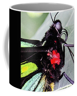 Color Up Close Coffee Mug