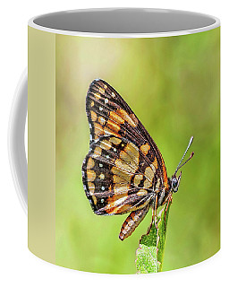 Coffee Mug featuring the photograph Colorful Butterfly by Anthony Dezenzio