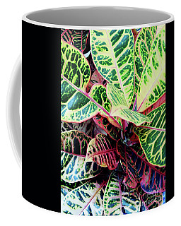 Colorful - Croton - Plant Coffee Mug
