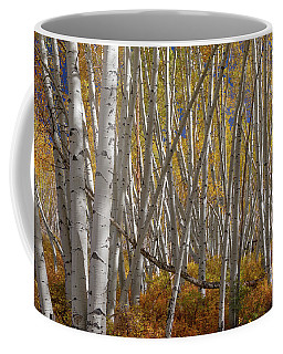 Coffee Mug featuring the photograph Colorful Stick Forest by James BO Insogna
