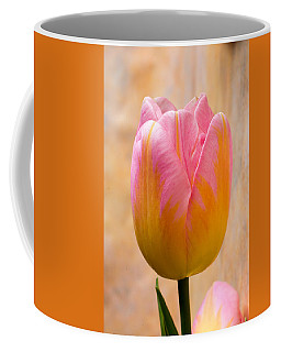 Colorful Tulip Coffee Mug