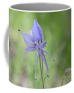 Columbine Details Coffee Mug
