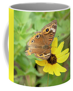Coffee Mug featuring the photograph Common Buckeye Butterfly by Sally Sperry