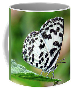 Coffee Mug featuring the photograph Common Pierrot Butterfly by Anthony Dezenzio