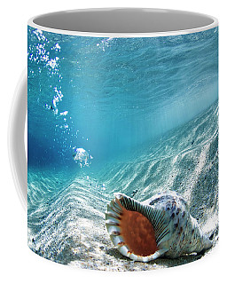 Conch Shell Bubbles Coffee Mug