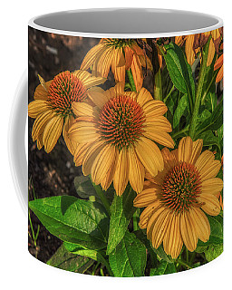 Coffee Mug featuring the photograph Coneflowers  by Guy Whiteley