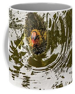 Coffee Mug featuring the photograph Coot Chick And Reflections by Kate Brown