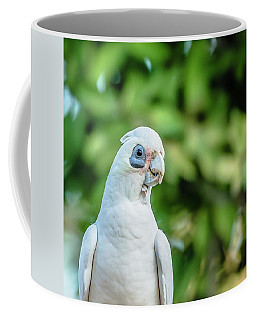 Corellas Outside During The Afternoon. Coffee Mug