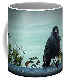 Cornish Crow Coffee Mug