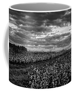 Cotton On A Hill Coffee Mug