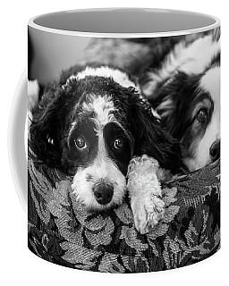 Couch Potatoes Coffee Mug