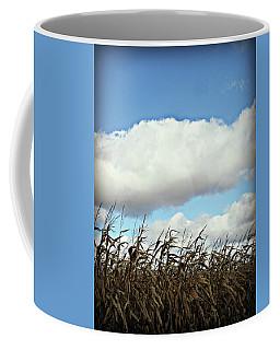 Country Autumn Cuves 5 Coffee Mug