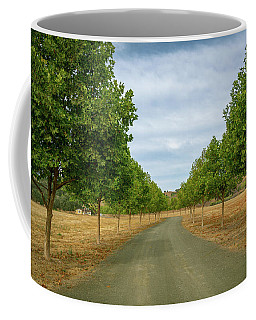 Coffee Mug featuring the photograph Country Lane To Vineyard by Michael Hope