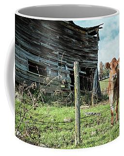 Cow By The Old Barn, Earlville Ny Coffee Mug