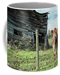 Coffee Mug featuring the photograph Cow By The Old Barn, Earlville Ny by Gary Heller
