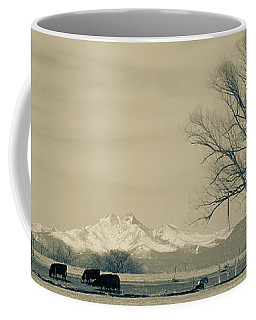 Cowbow Song On The Radio Coffee Mug
