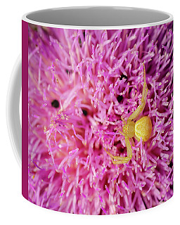 Crab Spider Coffee Mug