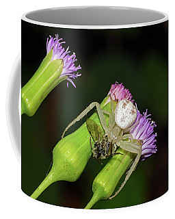 Crab Spider With Bee Coffee Mug
