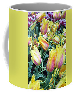 Crazy Tulips Coffee Mug
