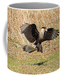 Crested Caracara Coffee Mug