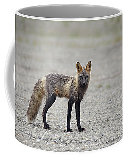 Cross Fox In Alaska Coffee Mug