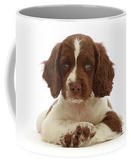 Cross Paws Coffee Mug