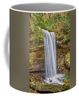 Cucumber Falls Coffee Mug