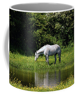 Cumbria. Ulverston. Horse By The Canal Coffee Mug