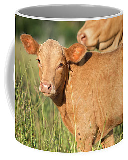 Cute Calf Coffee Mug