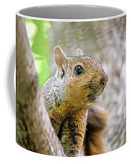 Cute Funny Head Squirrel Coffee Mug