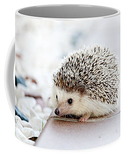Cute Hedgeog Coffee Mug