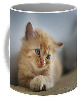Cute Orange Kitty Coffee Mug