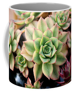 Cute Succulent Coffee Mug