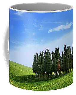 Coffee Mug featuring the photograph Cypress Stand by Scott Kemper