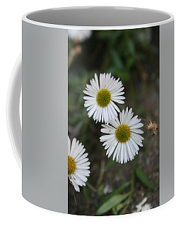 Daisy Daisy And Your White Petal Minding The Sun Core Coffee Mug