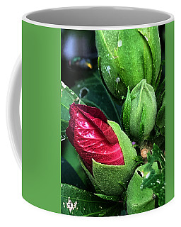 Dalton Coffee Mug