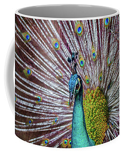 Dancing Indian Peacock  Coffee Mug