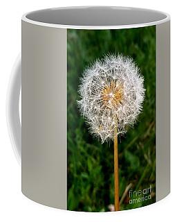 Dandelion 1 Coffee Mug