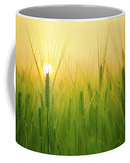 Dawn At The Wheat Field Coffee Mug