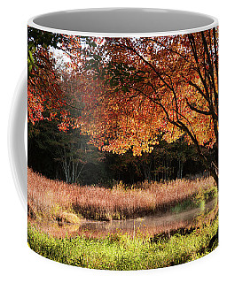 Dawn Lighting Rhode Island Fall Colors Coffee Mug