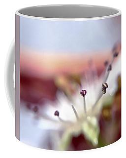 Day 0-1 Sunrise Coffee Mug