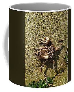 Death Shows Us We Are Nothing But Bones Coffee Mug