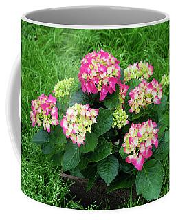 Coffee Mug featuring the photograph Decorative Floral Pink Hydrangeas C031619 by Mas Art Studio