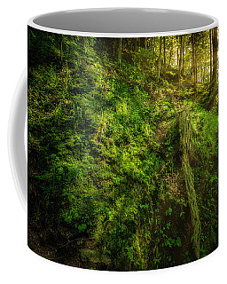 Coffee Mug featuring the photograph Deep In The Forests Of Bavaria by David Morefield