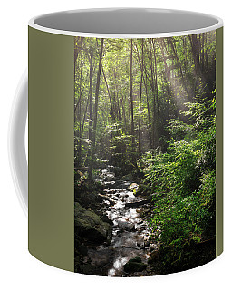 Deep In The Forrest - Sun Rays Coffee Mug