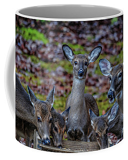 Deer Gathering Coffee Mug